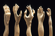 Woodcarving Prints - Hands of wood puppets Print by Bernard Jaubert