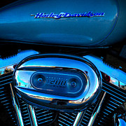 Sportster Photos - Harley Davidson Sportster 1200 by David Patterson