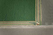 Agronomy Art - Harvesting Crop Field, Great Plains by John Wark