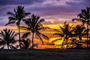 Tropical Sunset Prints - Hawaiian Sunset Print by Juli Scalzi