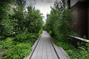 Disused Prints - High Line NYC Print by Gary Eason