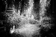 Cemetery Photos - Highgate Cemetery by Ian Broadmore