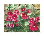 Holly Hocks Paintings - Hollyhock Wall by Corie Farley