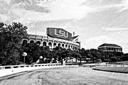 Lsu Posters - Home Field Advantage Poster by Scott Pellegrin