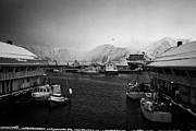 Honningsvag Prints - Honningsvag harbour finnmark norway europe Print by Joe Fox