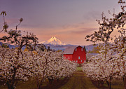 Darren  White - Hood River Sunrise