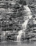 Sergey Korotkov - Hoopoe falls