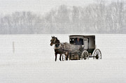 Horse And Buggy Posters - Horse and buggy in snow storm Poster by Dan Friend