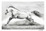 Dust Drawings Posters - Horse Poster by Shayne Sadler