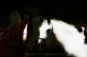 Photo Manipulation Mixed Media Framed Prints - Horses Framed Print by EricaMaxine  Price
