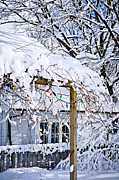 Snowstorm Photos - House under snow by Elena Elisseeva