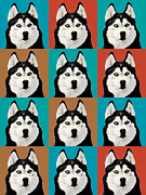Husky Pop Art Print by Susan Stone