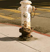 Crosswalk Photos - Hydrant by Molly Costa