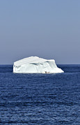 Rosemary Hawkins - Iceberg at Ferryland in...