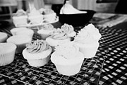 Frosting Posters - Iced Decorated Cupcakes On A Kitchen Table Poster by Joe Fox
