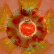 Healthy Eating Art - Illustration Of Tomato by Cam Wilson