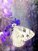 Insects Digital Art Metal Prints - In The Garden Metal Print by Betty LaRue