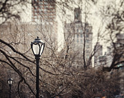 Central Park Photos - In the Shadow of the Upper East Side  by Lisa Russo