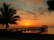 Elaine Franklin - Indian River Sunset