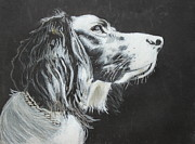 Dog Portrait Pastels - Intent by Jeanne Fischer