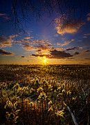 Geographic Prints - Interlude Print by Phil Koch