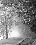Black And White Rural Photography Prints - Into the Fog Print by Andrew Soundarajan