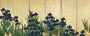 Ogata Korin - Irises
