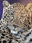 Jaguars Paintings - Jaguar by Linda Clavette Quigley