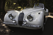Curt Johnson Acrylic Prints - Jaguar XK 120 in the Shade Acrylic Print by Curt Johnson