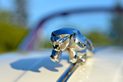Badge Photos - Jaguar XK 150 Drophead Coupe 1957 by George Atsametakis