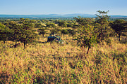 Jeep With Tourists On Safari In Serengeti. Tanzania. Africa. Print by Michal Bednarek