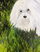 White Maltese Originals - JoJo by Maureen Pisano