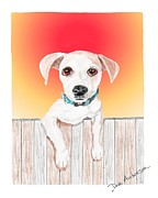 Animal Shelter Drawings - JuJu - a former shelter sweetie by Dave Anderson