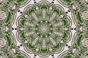 Carolyn Ricks Framed Prints - Kaleidoscope Framed Print by Carolyn Ricks