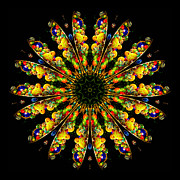 Neon Photos - Kaleidoscope of Blown Glass by Amy Cicconi