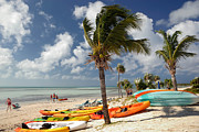 Palm Trees Prints - Kayaks on the Beach Print by Amy Cicconi