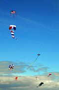 Greg Amptman - Kite Fest