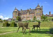 Manor Photos - Knightshayes Court by Joana Kruse