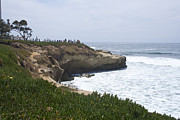 Lajolla Metal Prints - Lajolla Shores 5 Metal Print by Carol Landry