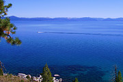 Boating Framed Prints - Lake Tahoe #1 Framed Print by J D Owen