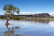 South Island Posters - Lake Wanaka Otago New Zealand Poster by Colin and Linda McKie