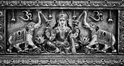 India Metal Prints - Lakshmi Metal Print by Tim Gainey