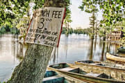 North Louisiana Prints - Launch Fee Print by Scott Pellegrin
