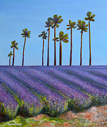 Jennifer Richards - Lavender field and palm...