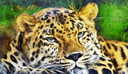 Animal Themes Painting Prints - Leopard portrait Print by Odon Czintos