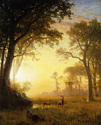 19th Century Painting Prints - Light in the Forest Print by Albert Bierstadt