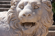 Lion Statue Sculpture Posters - Lion  Poster by Georgios Kollidas