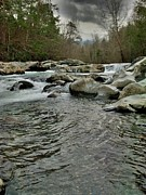 Gsmnp Photos - Little Pigeon River by Janice Spivey