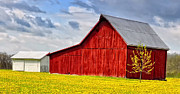 Brian Mollenkopf - Little Red Barn