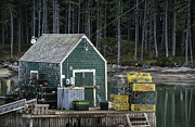 Shack Prints - Lobster  Shack Print by John Greim
